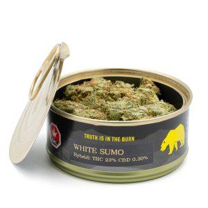 Skookum Cannabis White Sumo