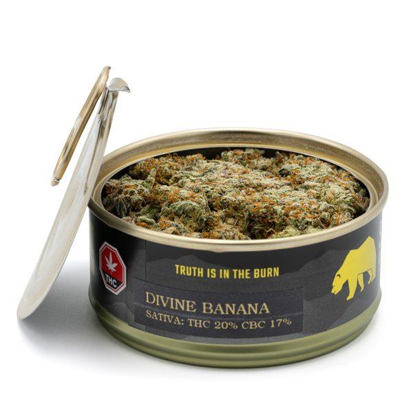 Skookum Cannabis Divine Banana