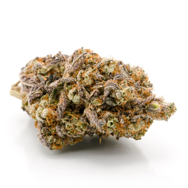 Thin Mint Cookies Weed Strain