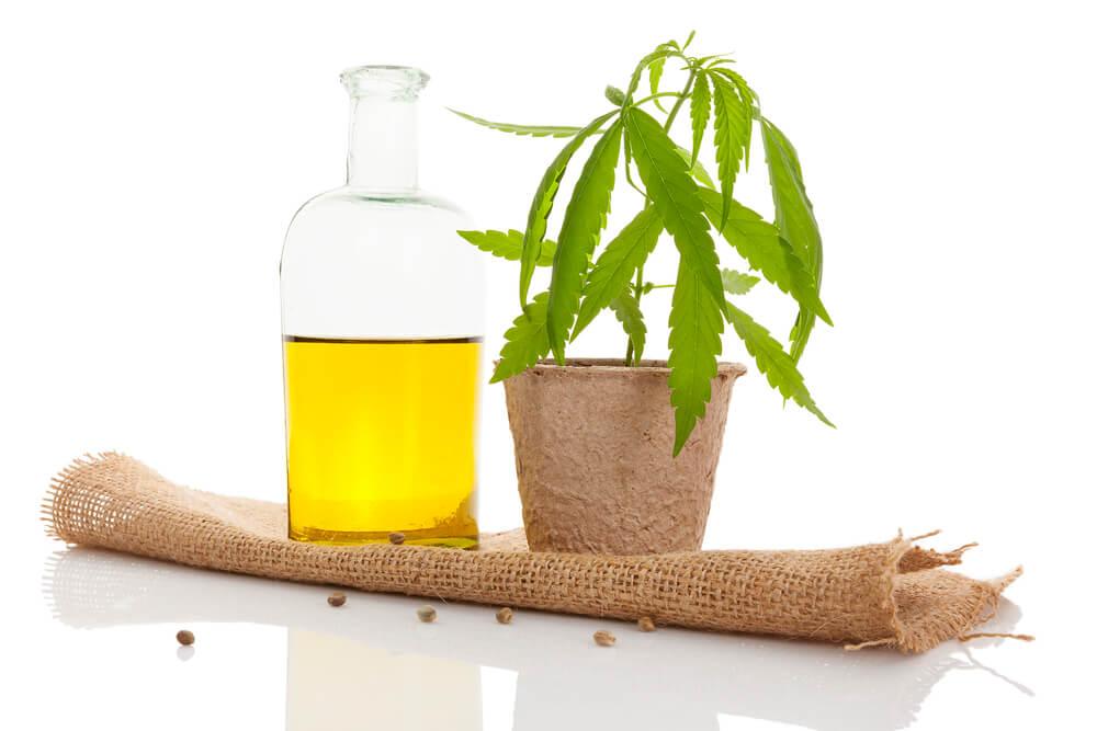 Can Cannabis Oil Go Bad?