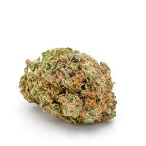El Jefe Exotic Marijuana Strains