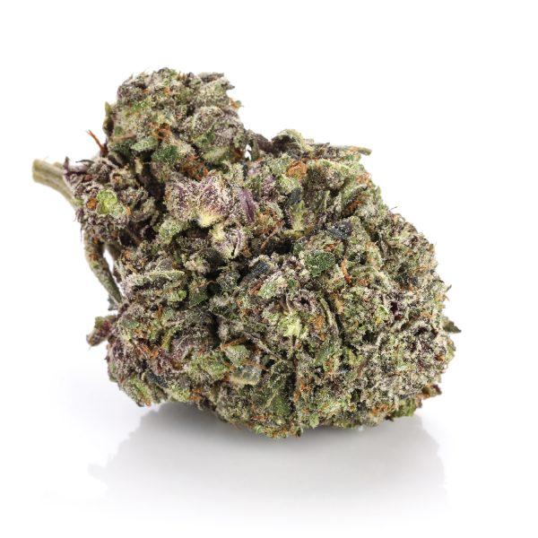 Purple Bubba