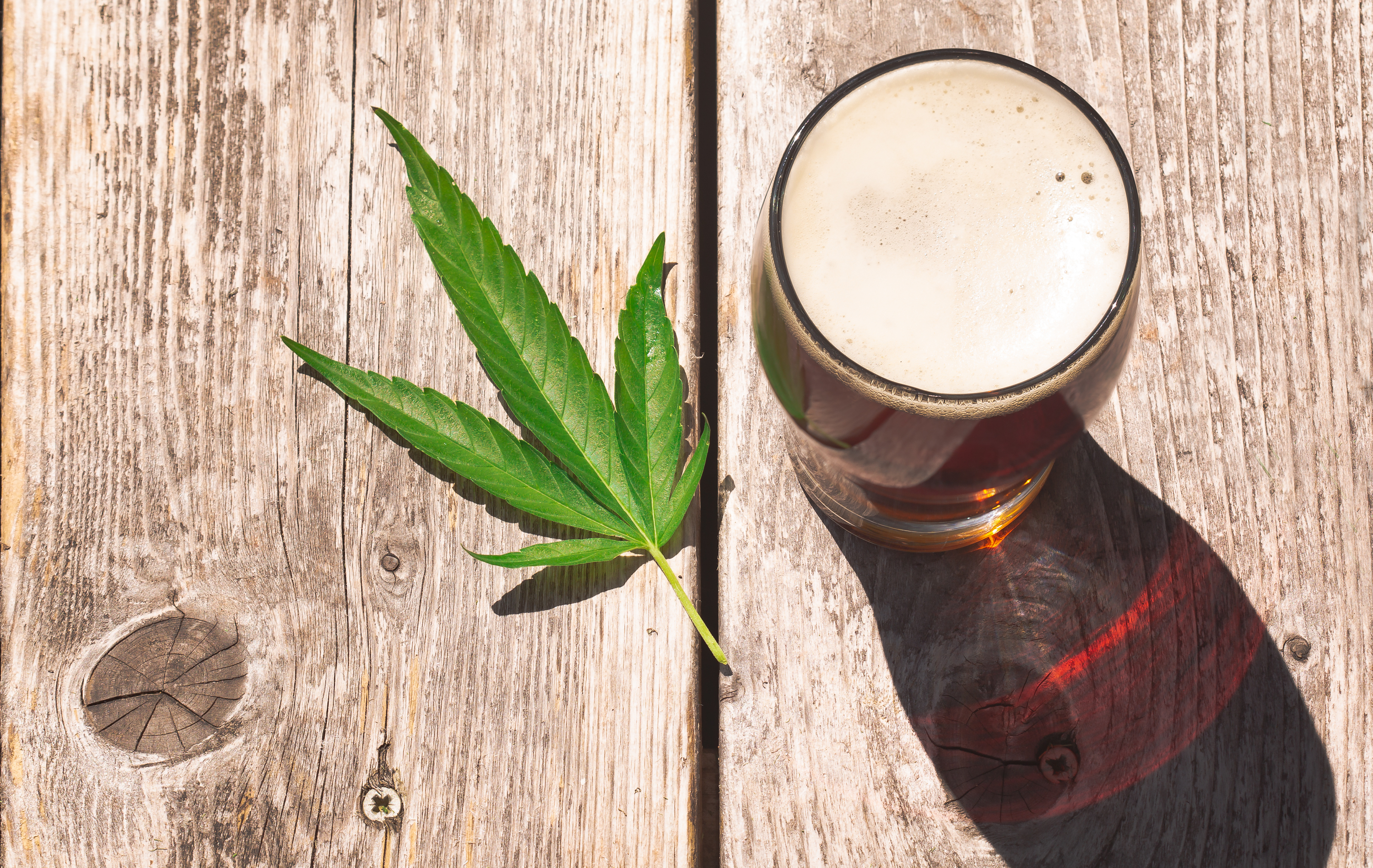 cannabis and alcohol
